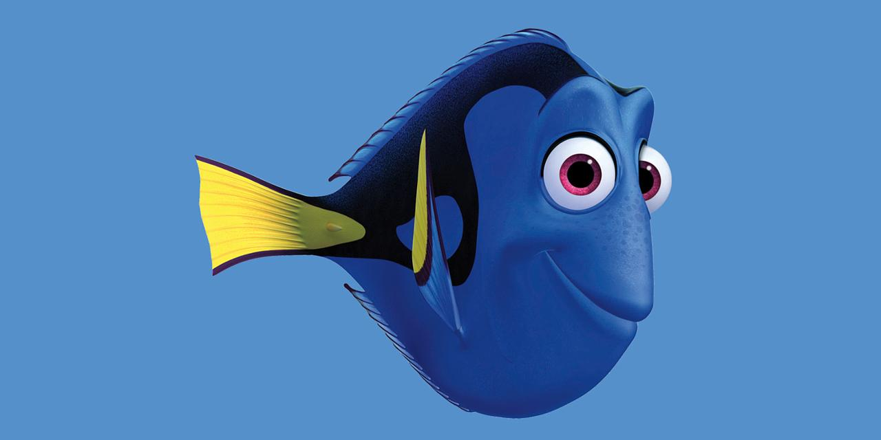 Good Morning Everyone Finding Nemo : Finding nemo sequel to be titled dory