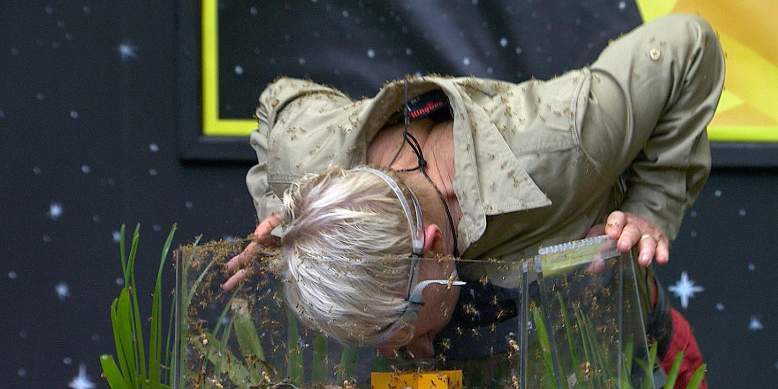 I'm A Celebrity 2013: Laila Morse voted out of the jungle