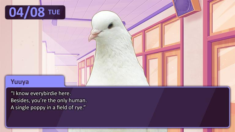 Bird dating simulator game