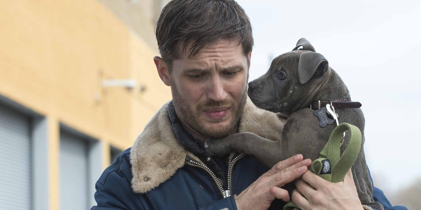 The Drop review: Tom Hardy is exhilarating - Toronto Film ...