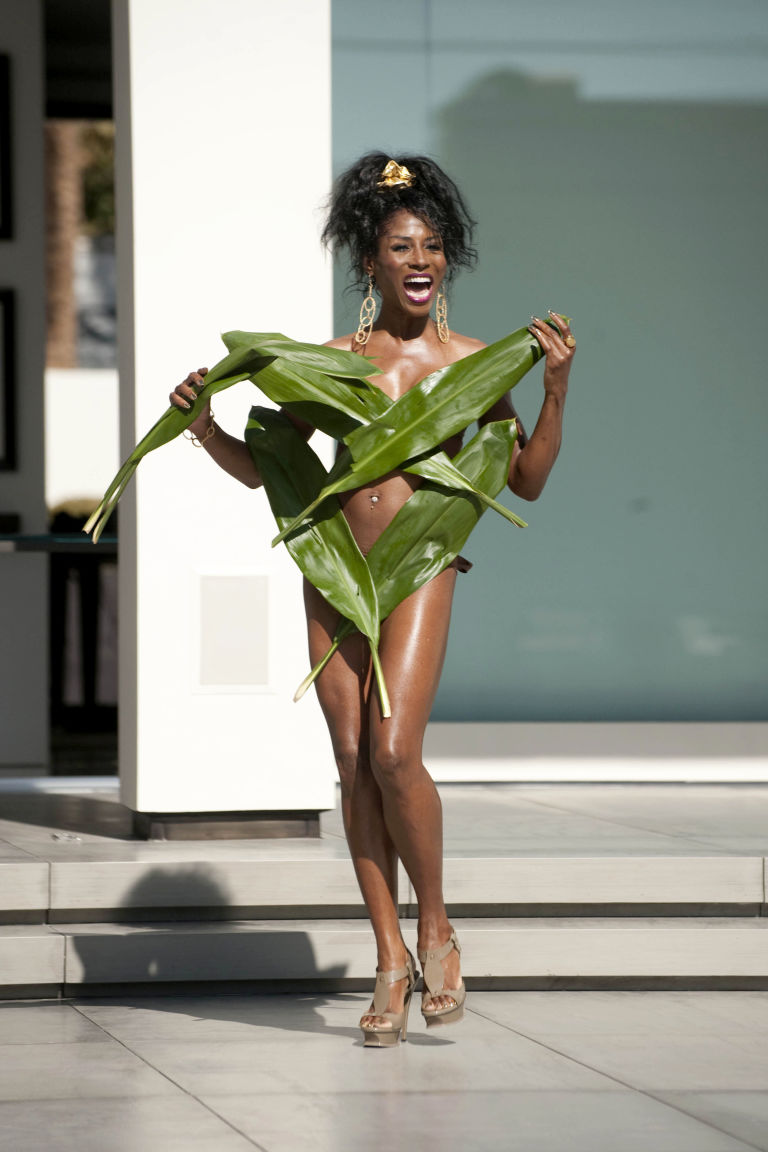Image result for Sinitta xfactor leaf