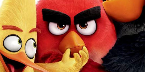 Watch Red Get Angry A Lot In The New Angry Birds Movie Trailer