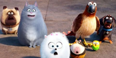 The Secret Life Of Pets review: the cat's whiskers or a bit of a dog?