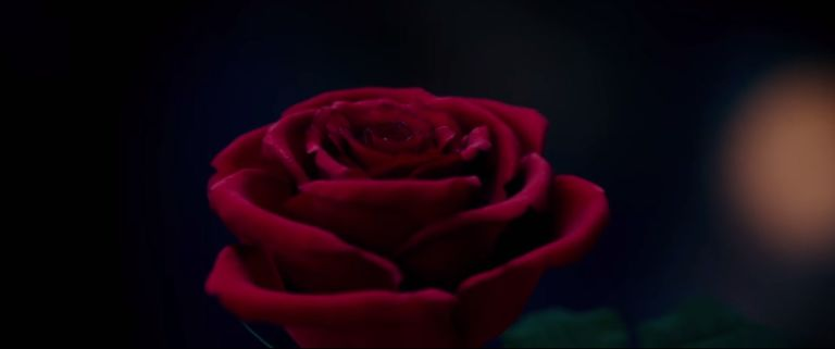 Beauty And The Beast Trailer Grab
