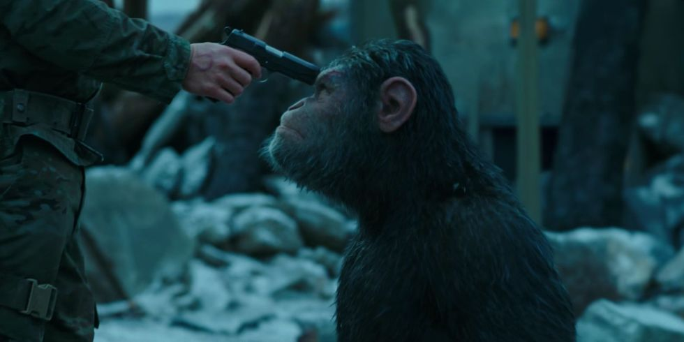 Resultado de imagen de war of the planet of the apes