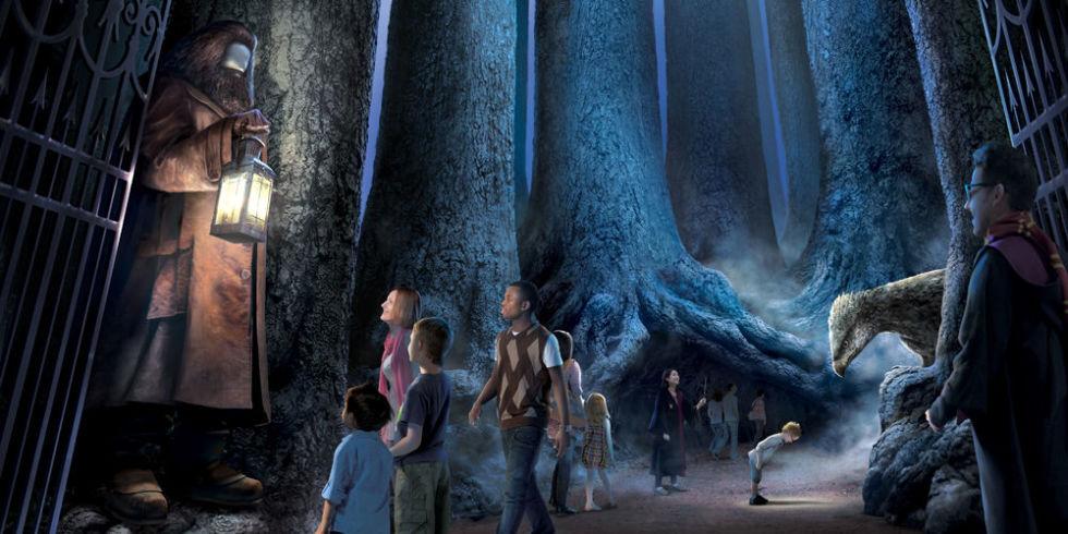 The Forbidden Forest Harry Potter Studio Tour