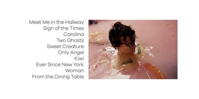 「harry styles album」的圖片搜尋結果