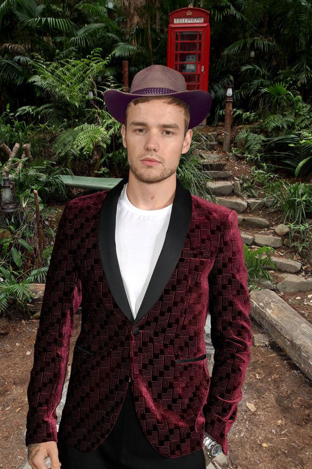 PHOTOSHOP Liam Payne, I'm a celeb rumours