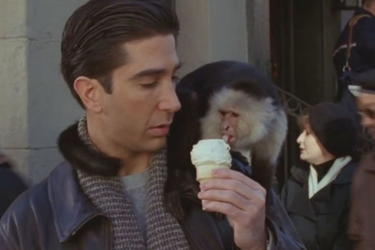 Marcel Eats Ross S Ice Cream In Friends